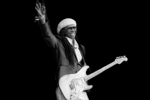 Nile Rodgers Web